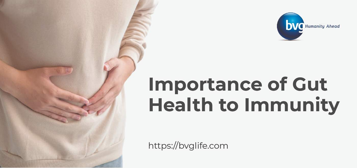 Importance of Gut Health to Immunity